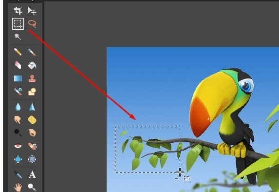 3 cách xoay ảnh trong Photoshop online