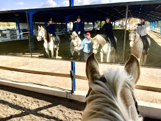 Cortijo Uribe, riitta reissaa, kouluratsastus, dressage, Horsexplore, jemma gooding