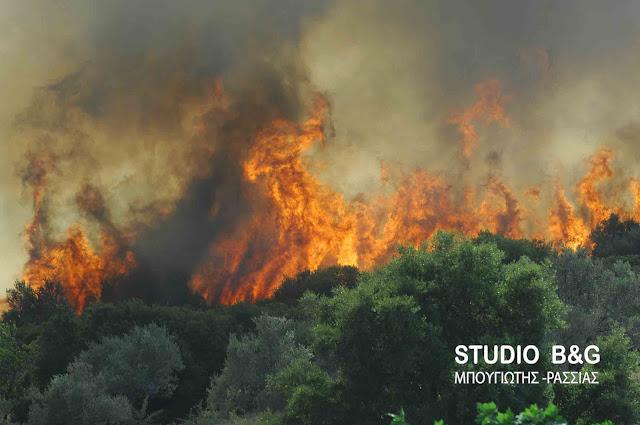 Στο «κόκκινο» ο κίνδυνος εκδήλωσης πυρκαγιάς και σήμερα στην Αργολίδα