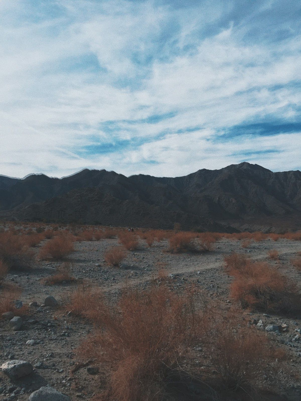PALM SPRINGS, SD & LA | AESTE BLANC