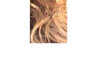 cheveux à pointes fourchues