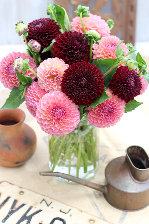 OF SPRING AND SUMMER...: Tiny Blooms - # 37 - Two Pompon Dahlias