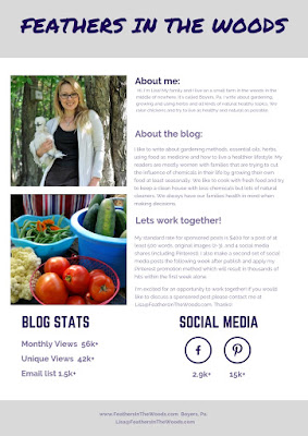 Natural blogger media kit