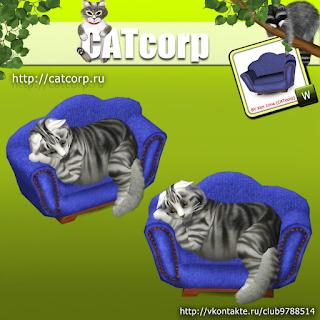 catsofa_b.png