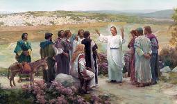 Cantos missa 15º Domingo Comum