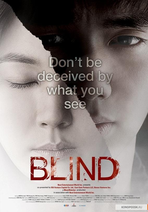 Sinopsis Blind (2011)