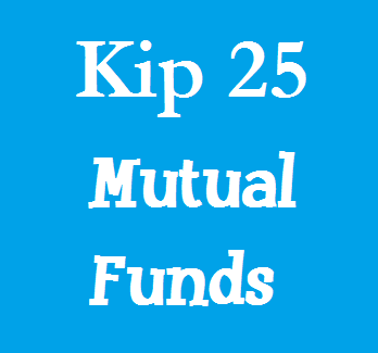 Kip 25 Best Funds