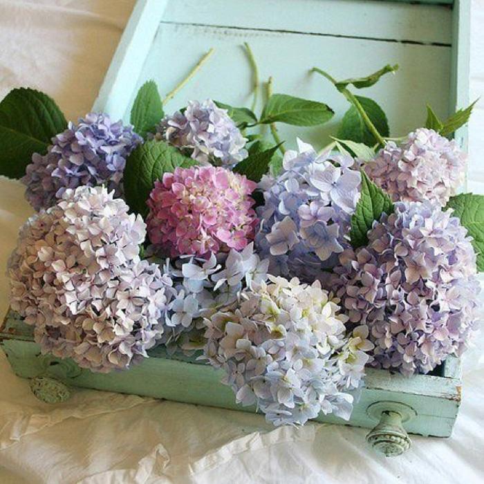 ▷hortensias para decorar tu boda - ▷ blog de bodas originales para