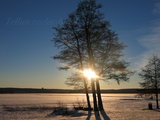 vesijärvi-lahti-talvikuvat-lahtikuvat