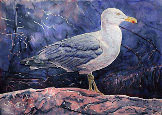 """Monhegan Seagull"" - 14"" x 20"" - Watercolor By Paul Sherman"