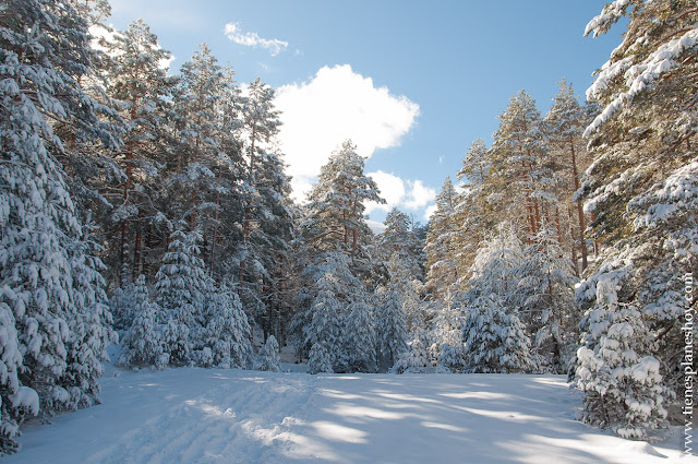 Ruta circular raquetas nieve sierra Madrid paisajes Guadarrama Cotos Cerradillas