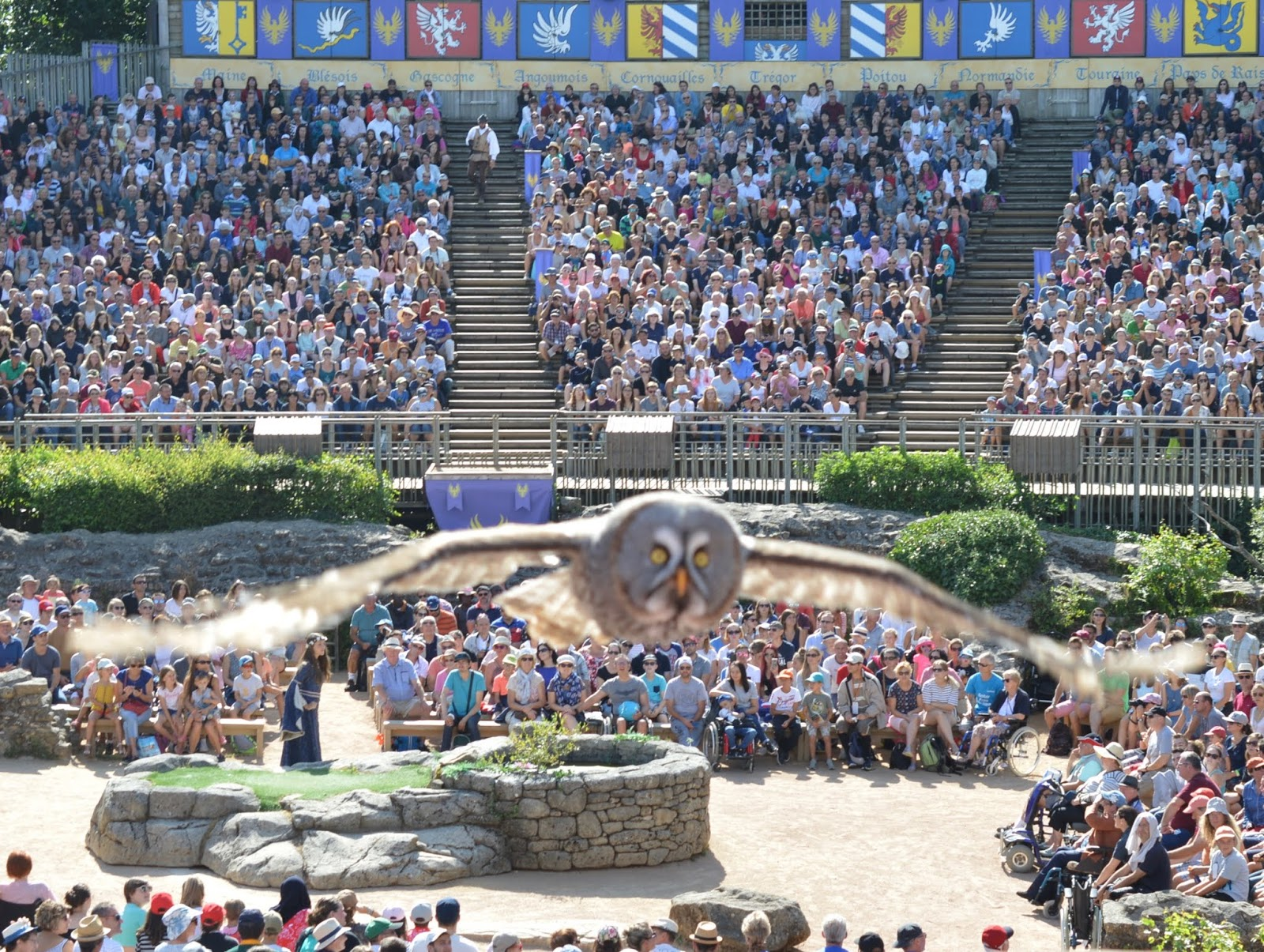 Puy du Fou Theme Park, France - - owl in the birds of prey show