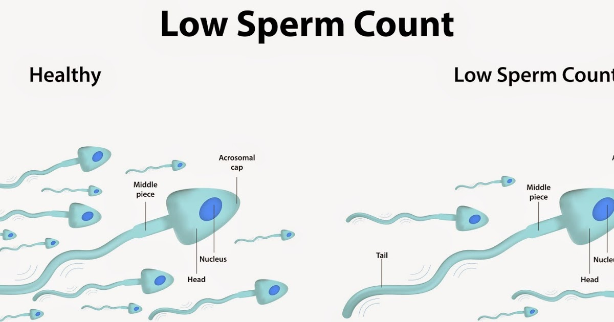 The average men can ejaculate between 120 and 350 million sperms per cubic centimetre.