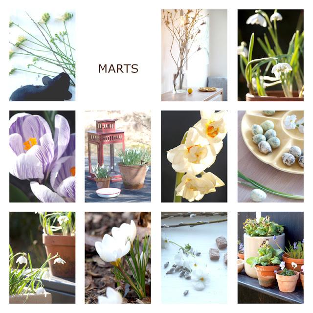 Året i haven 2016 - marts