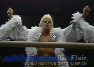 NWA CLASH OF THE CHAMPIONS 1 - 1988: Ric Flair kept his NWA World Heavyweight Championship in a 45 minute draw with Sting