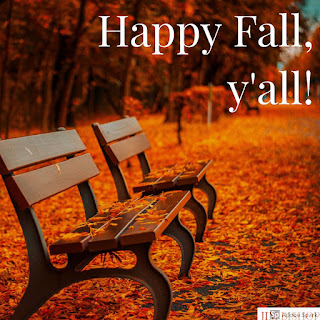 All the ways we recognize fall in the south ....