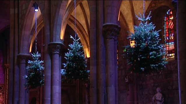 Les sapins suspendus dans l'église Sainte Georges de Sélestat