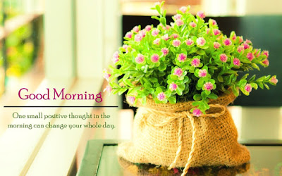 100 Brand New Good Morning Quotes for Friends