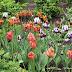 April Flowers, Historic Garden Week