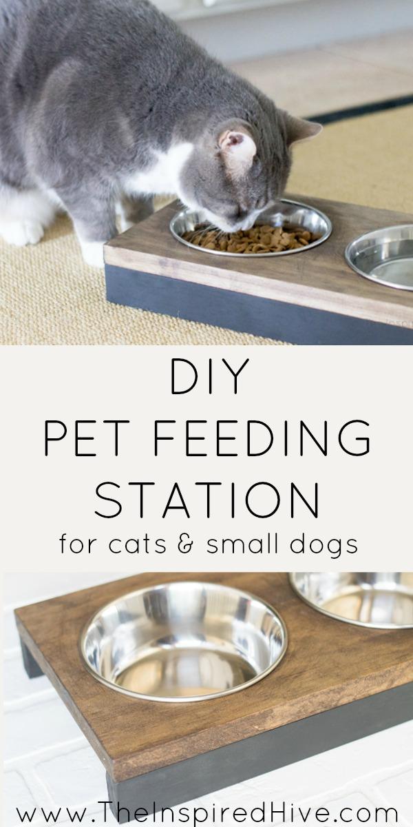 It's so easy to build this DIY raised pet feeder! Perfect idea for small dogs or cats. Get modern farmhouse style with black and wood tones.