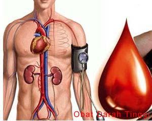 obat darah tinggi