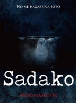 Sadako: Capítulo Final Torrent Thumb