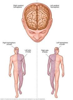 jamur obat stroke, terapi penyakit stroke ringan, obat khusus stroke, cara terapi mengobati penyakit stroke, menyembuhkan stroke sebelah kiri, penyakit stroke ringan, penyakit stroke iskemik, obat herbal murah untuk stroke, obat ampuh sakit stroke, tumbuhan obat stroke ringan, mengobati stroke berat, bagaimana cara mengobati stroke ringan, obat generik untuk stroke ringan, obat herbal penderita stroke ringan, penyakit stroke dan cara menanggulanginya, pengobatan stroke, obat untuk penderita stroke ringan, obat herbal untuk mengobati penyakit stroke, pengobatan herbal stroke ringan, obat apotik untuk stroke, obat oles stroke, obat alami sakit stroke, obat dokter untuk stroke ringan, obat penyakit stroke secara medis, mengobati penyakit stroke