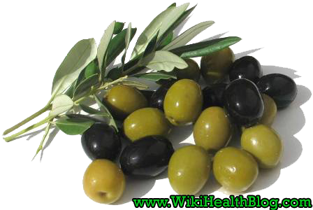 Olive health benefits : WikiHealthBlog