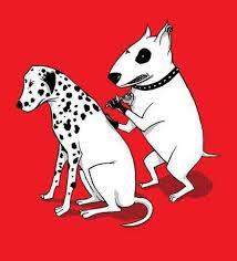 Dalmatian tattoo cartoon picture