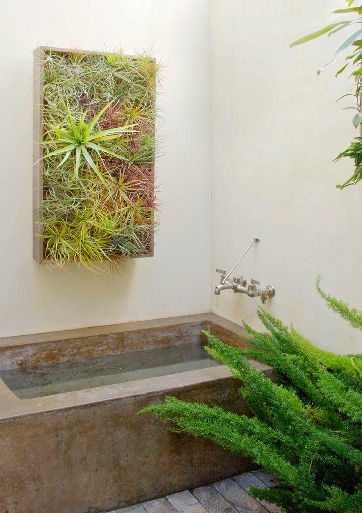 Las mejores plantas para el cuarto de ba o ba os y muebles - Muebles para plantas ...