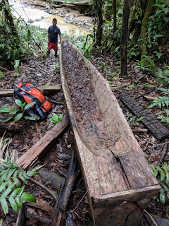 dugout canoe construction in Ecuador's Amazon