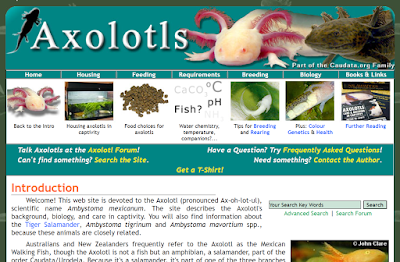 axolotl.org website for axolotl care