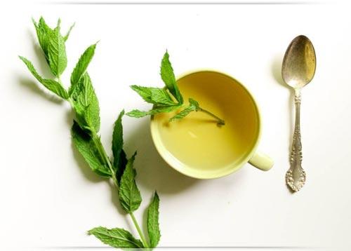 شاي النعناع ،، كوب الدواء اللذيذ