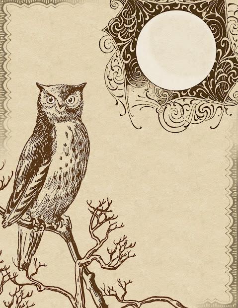 Printable Owl Stationery Envelopes - imgUrl