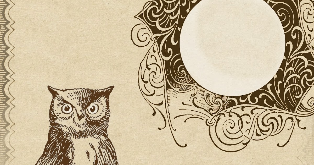 Lilac  Lavender A Wise Old Owl