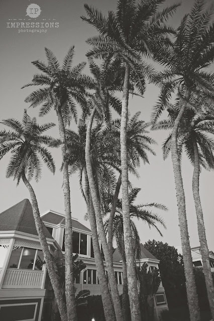 thistle lodge on sanibel island wedding