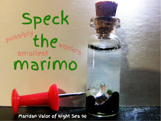Update on Speck; possibly the world's smallest marimo.