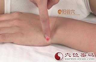 陽谷穴位 | 陽谷穴痛位置 - 穴道按摩經絡圖解 | Source:zhentuiyixue.com