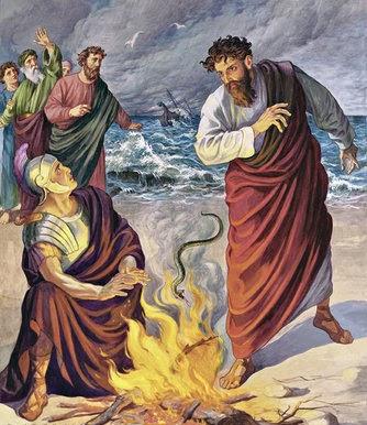Pablo arroja la víbora al fuego