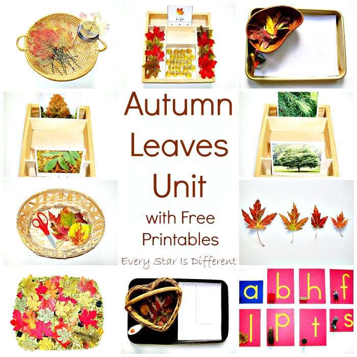 Autumn Leaves Unit with Free Printables