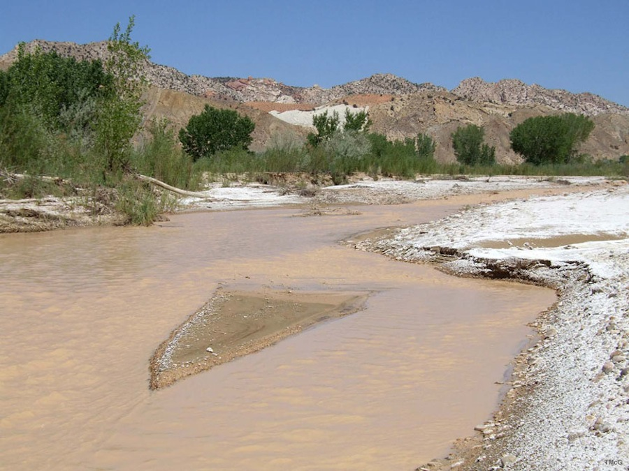 Lodo ou Sedimento de Terras Inundadas