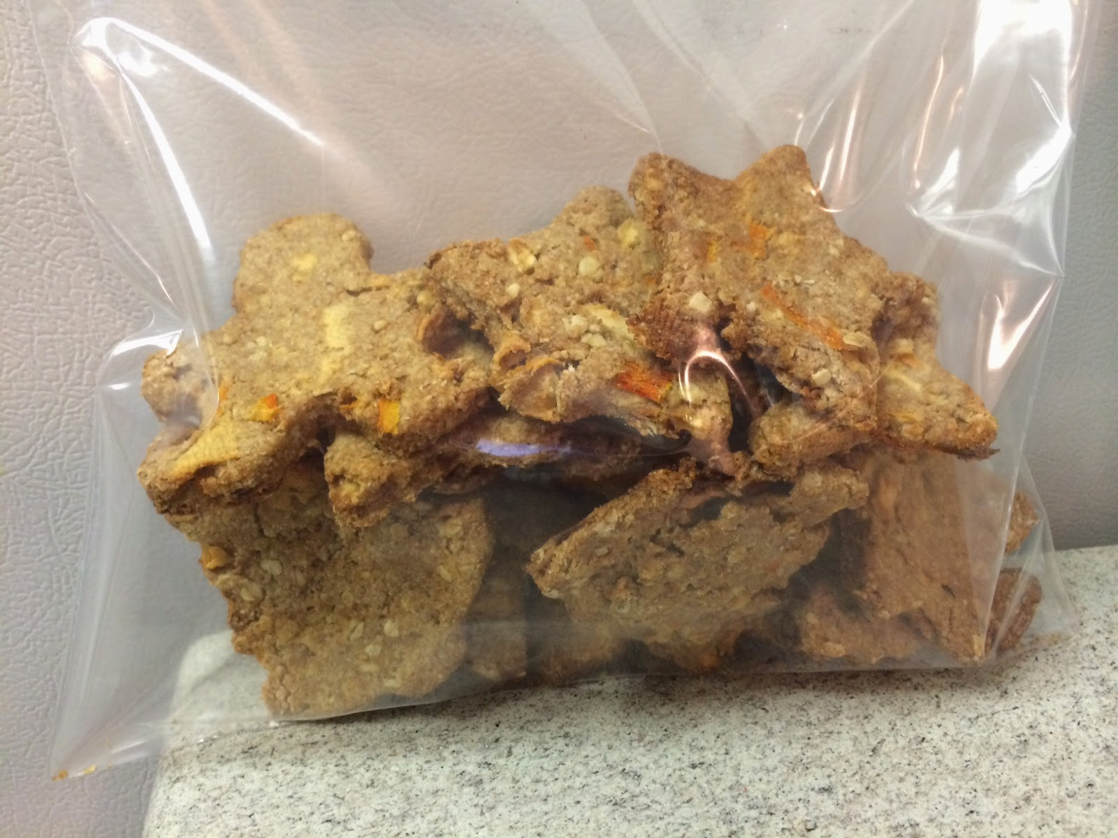 homemade dog treats stored in a bag