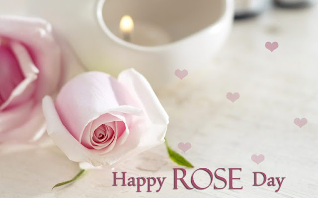 Rose Day Images Download Photos