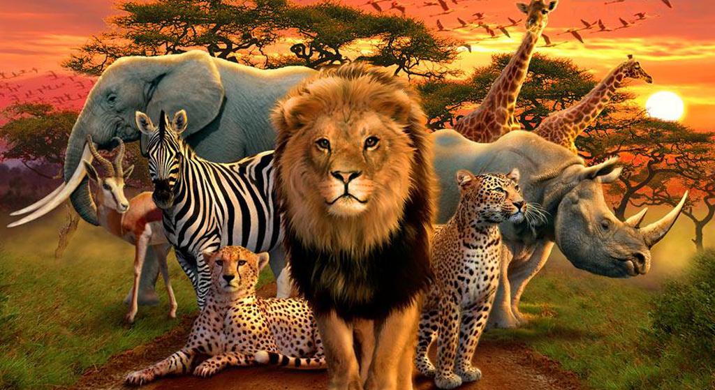 AFRIKA TUNAJIVUNIA KWA MAAJABU 21.