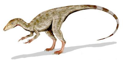 Compsognathus | facts | size