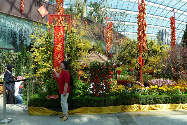 Flower Dome w Singapurze