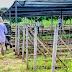 Quase 200 apenados de Rondônia são aprovados no Enem em 2017, informa Sejus