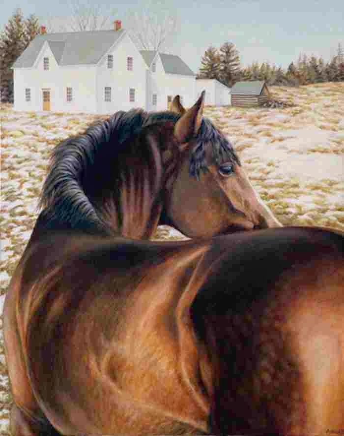 Современная канадская художница. Adrian Baker