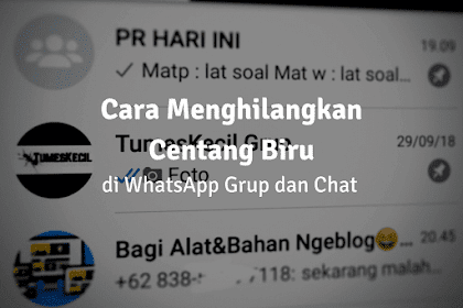 2 Cara Menghilangkan CentangBiru di Whatsapp, Bisa untuk Grup!