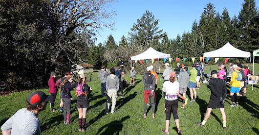 Feel Lucky, Punk? Good Times at the Baytrailrunners Whistle Punk Half (Feb '18)